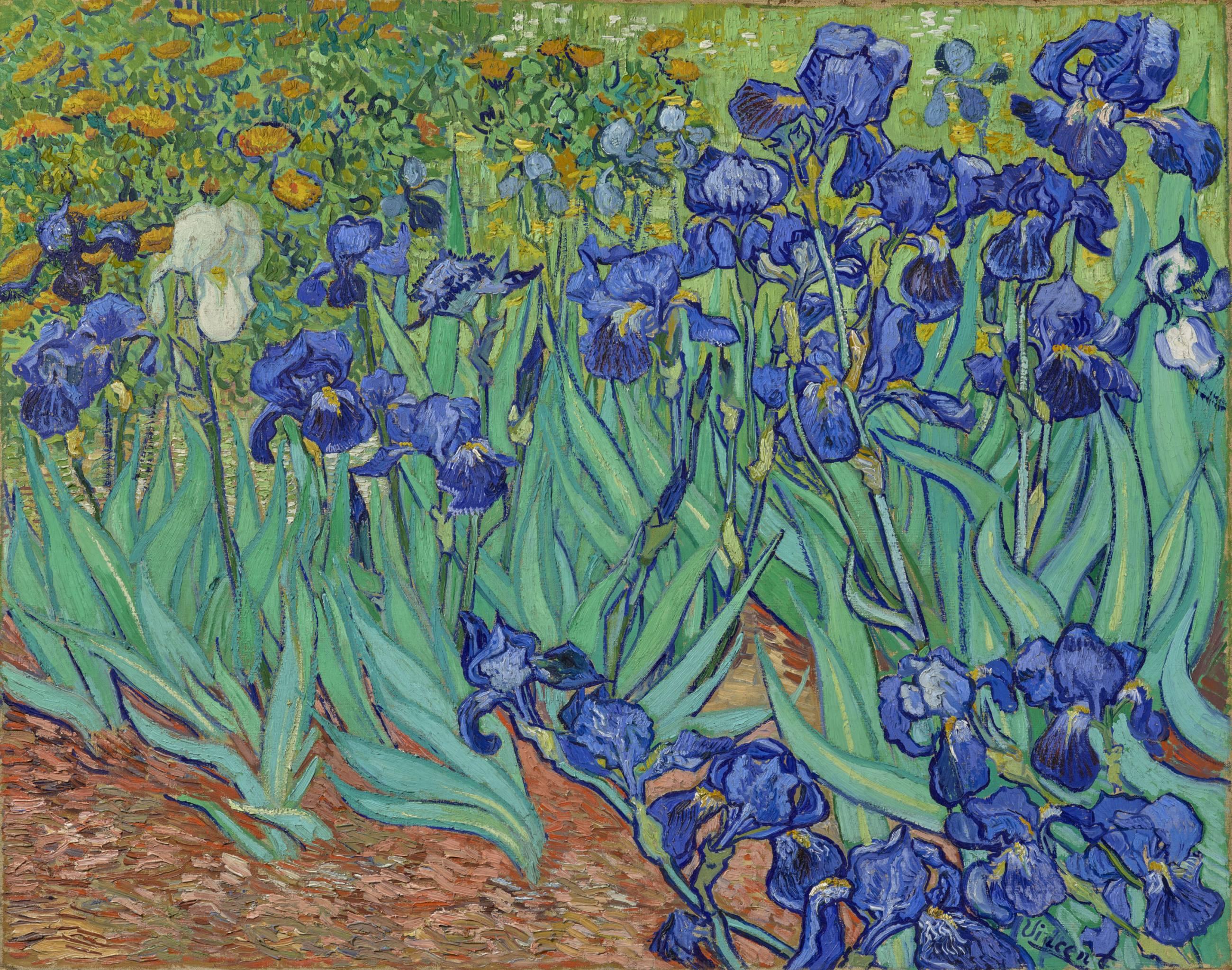 "Vincent van Gogh, ""Irises"" (1889) | Photo: Getty Center"