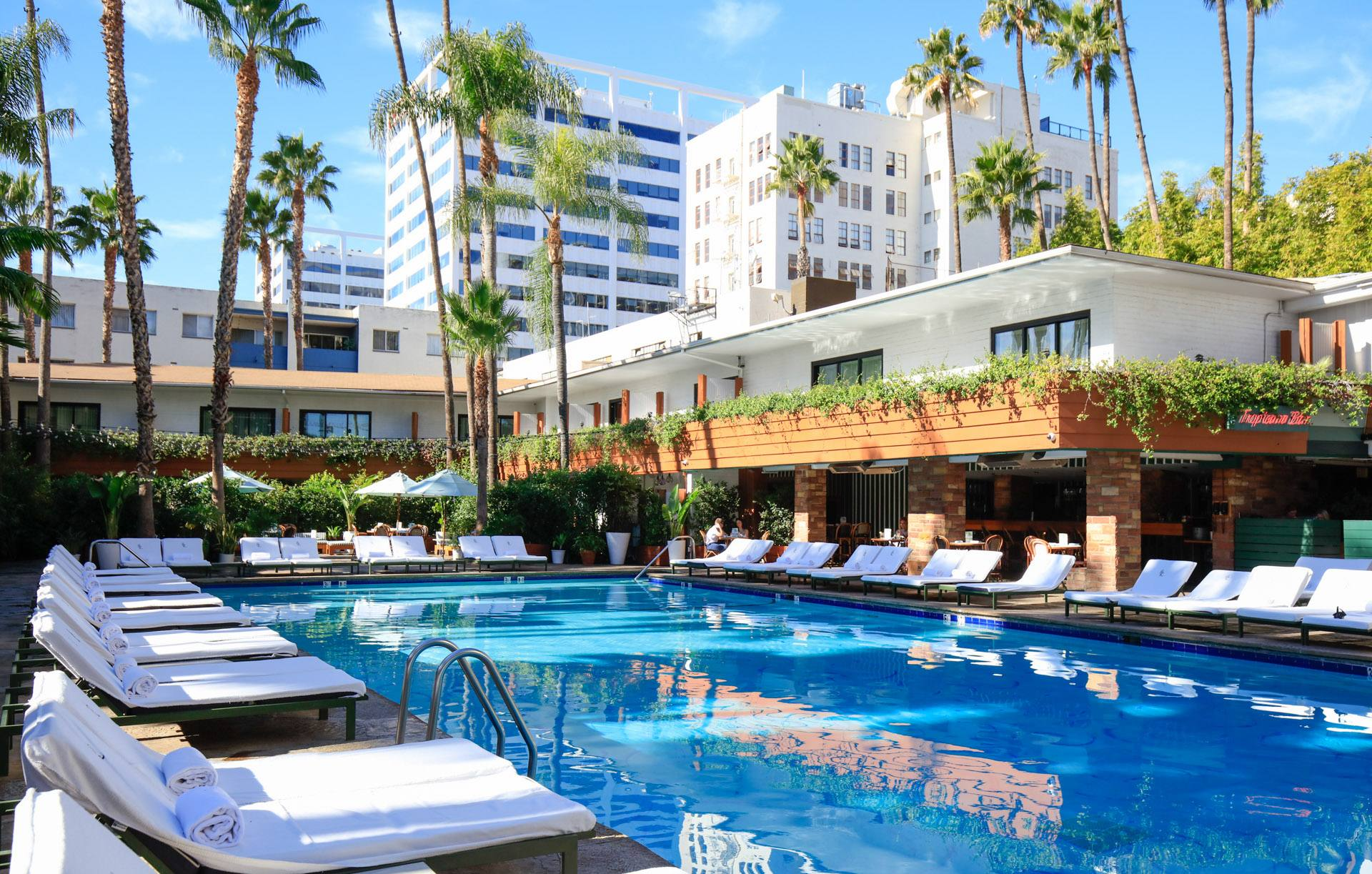 Tropicana Pool at the Hollywood Roosevelt Hotel   |  Photo:  Yuri Hasegawa