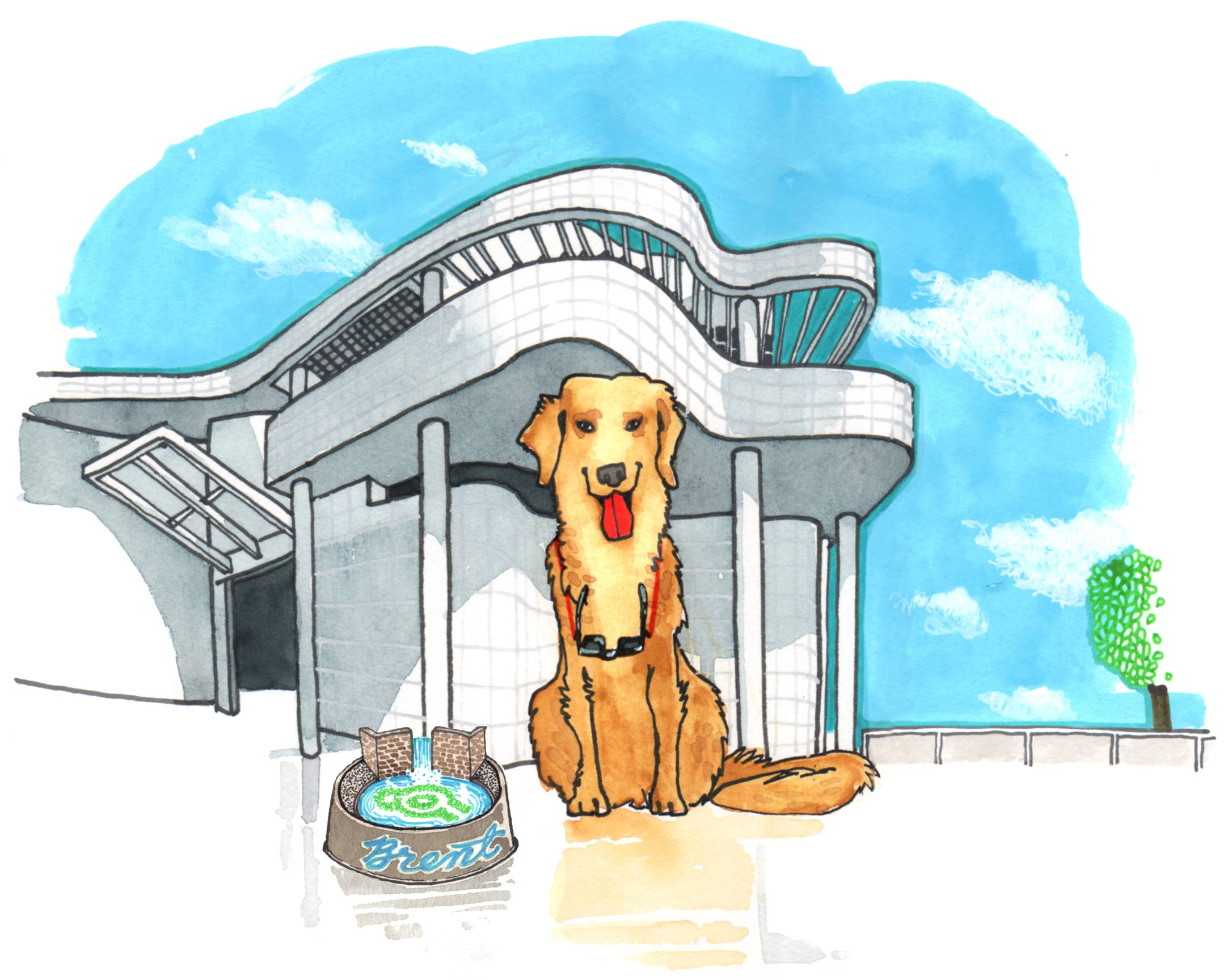 Golden Retriever at the Getty Center in Brentwood | Illustration by Max Kornell