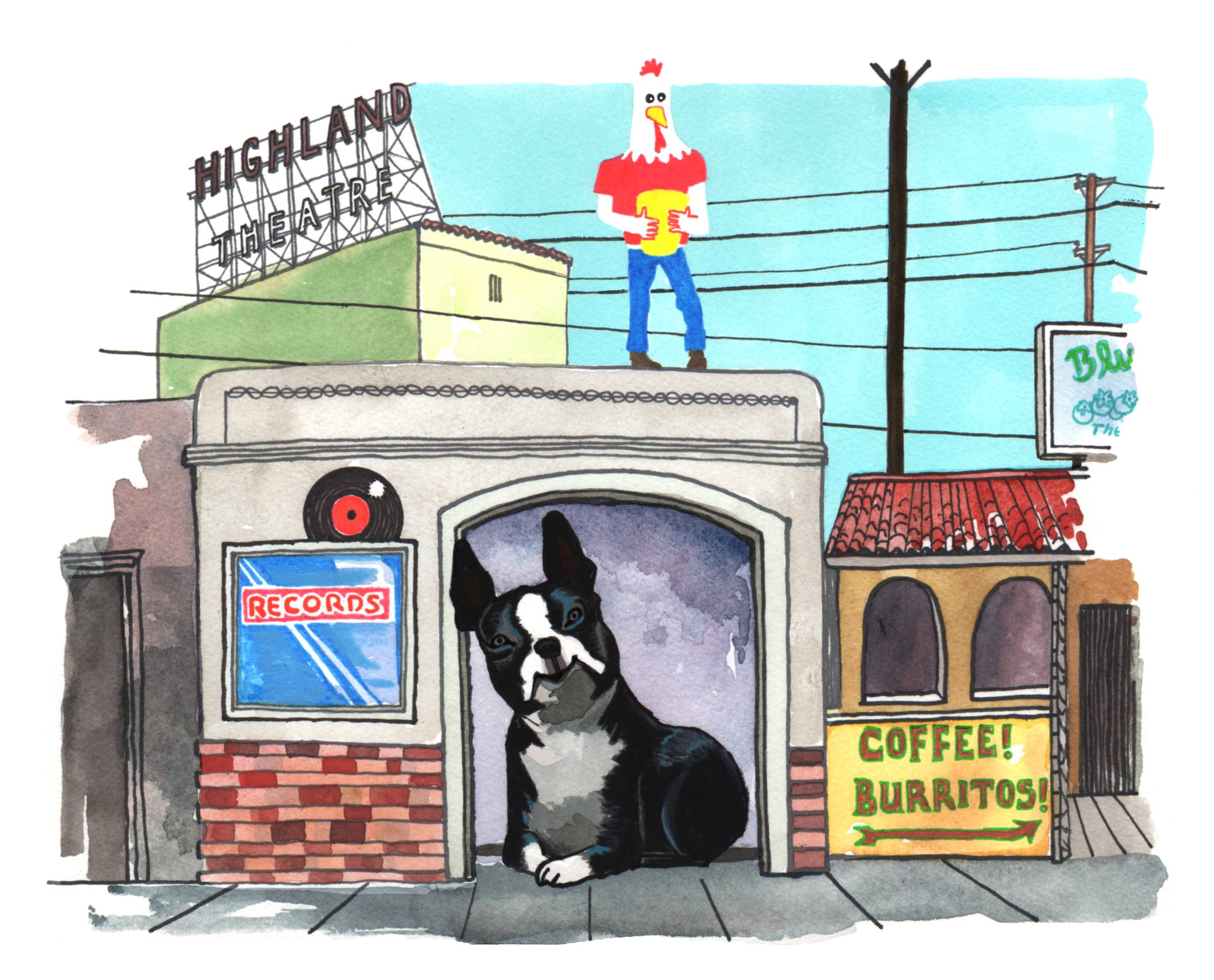 Boston Terrier in Highland Park | Illustration by Max Kornell