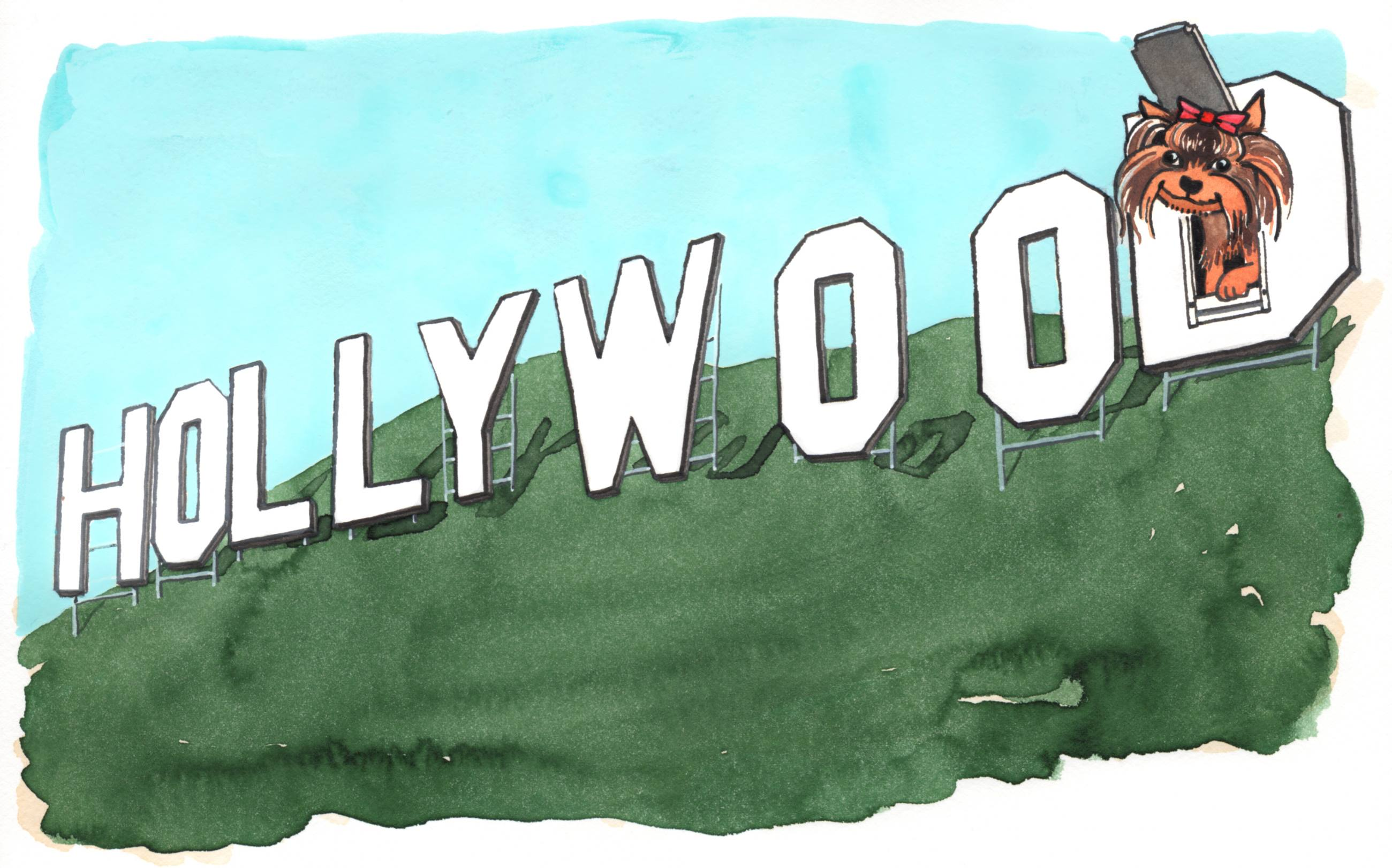 Yorkshire Terrier at the Hollywood Sign | Illustration by Max Kornell