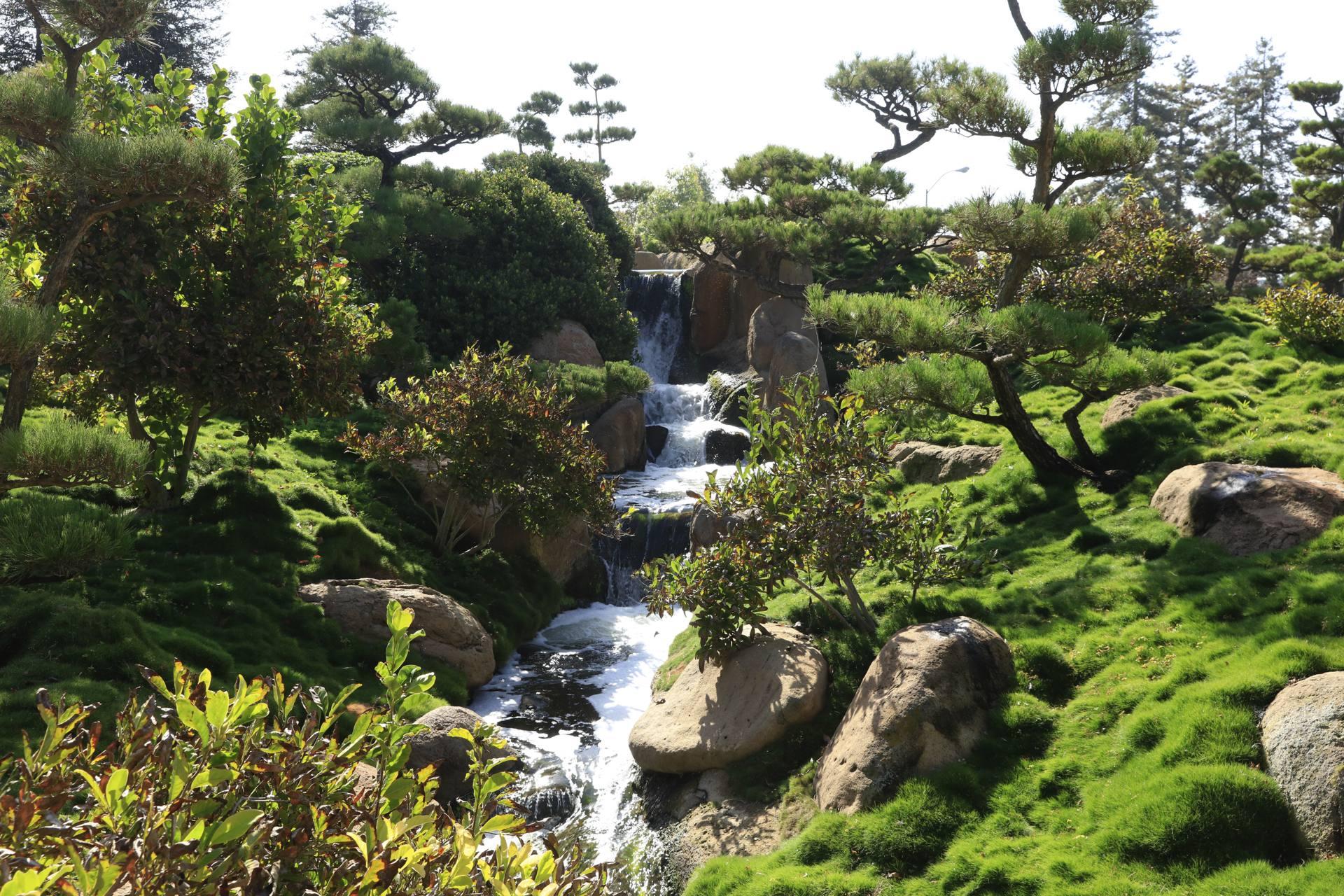 Japanese Garden Valley Waterfall
