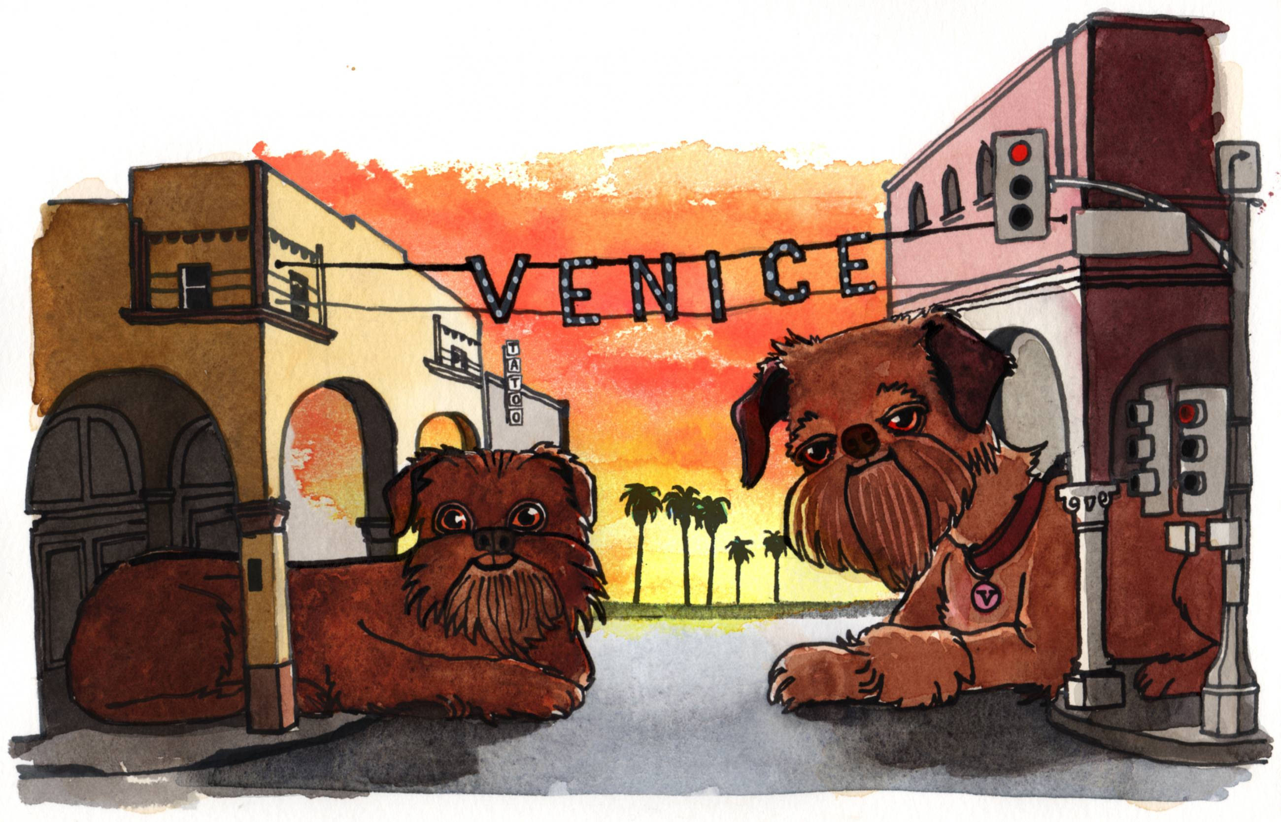 Brussels Griffon at the Venice Sign | Illustration by Max Kornell