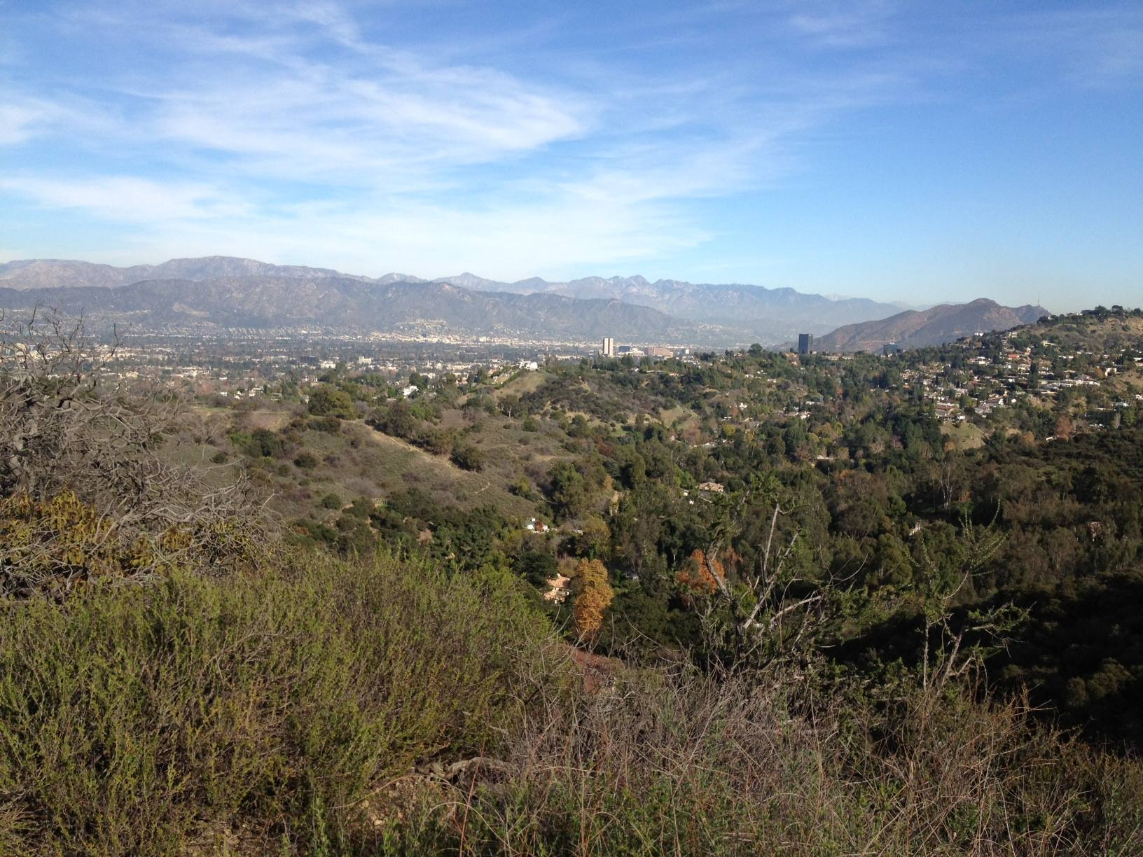 Studio City viewed from TreePeople