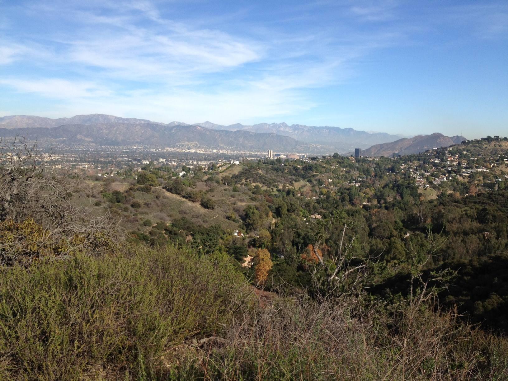 Studio City viewed from TreePeople