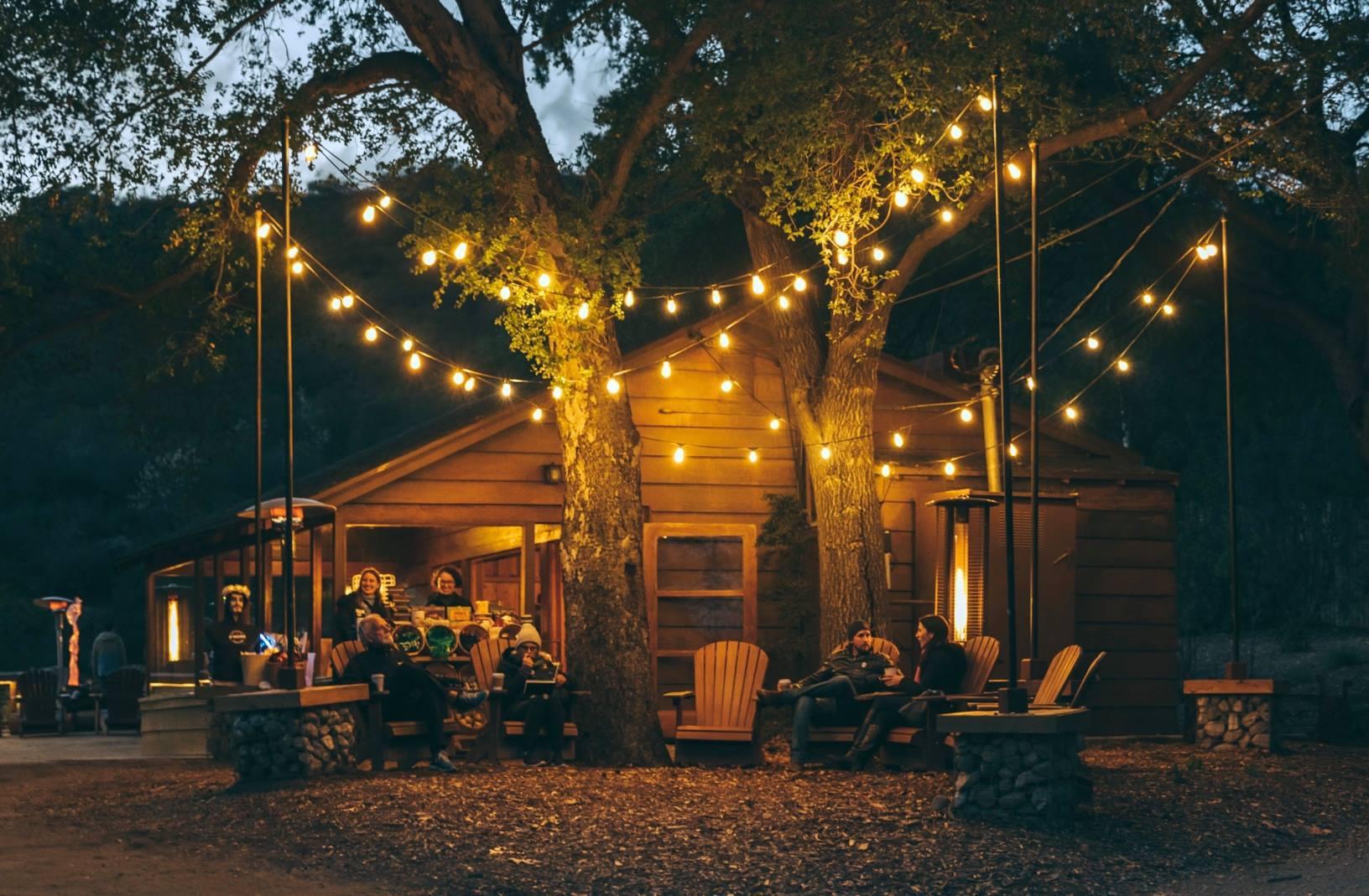 Night Garden at Descanso Gardens