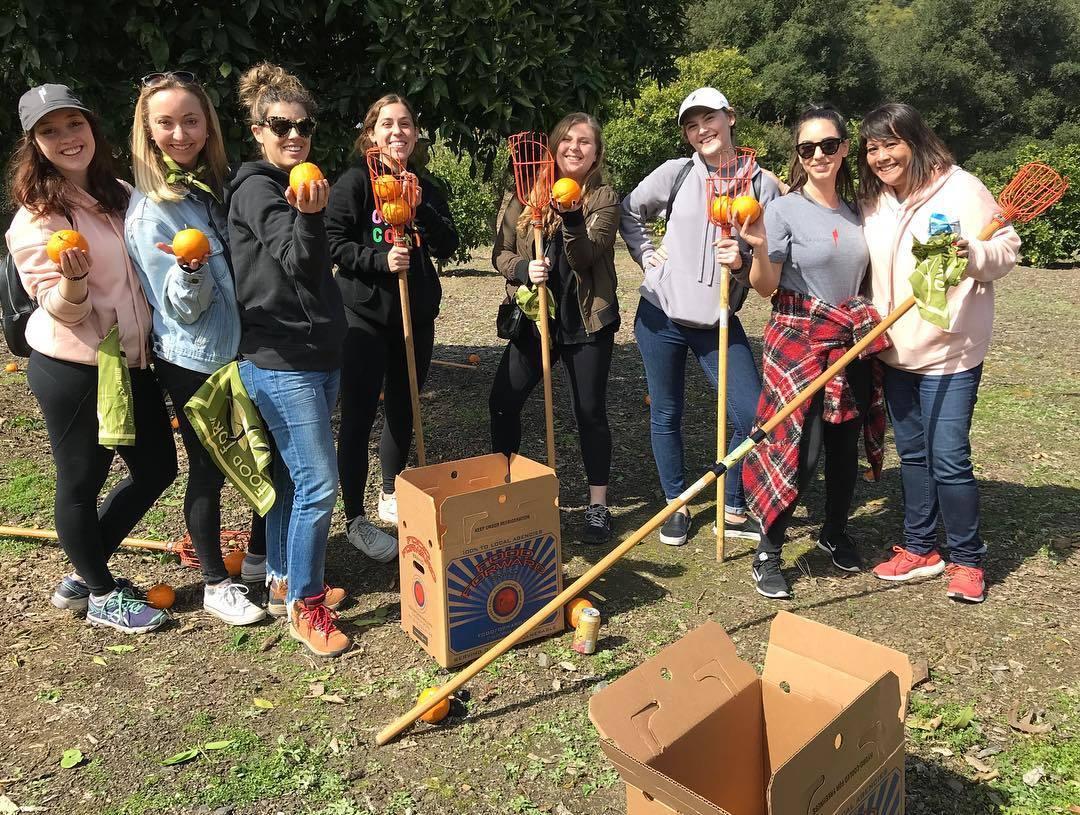 Food Forward Volunteers