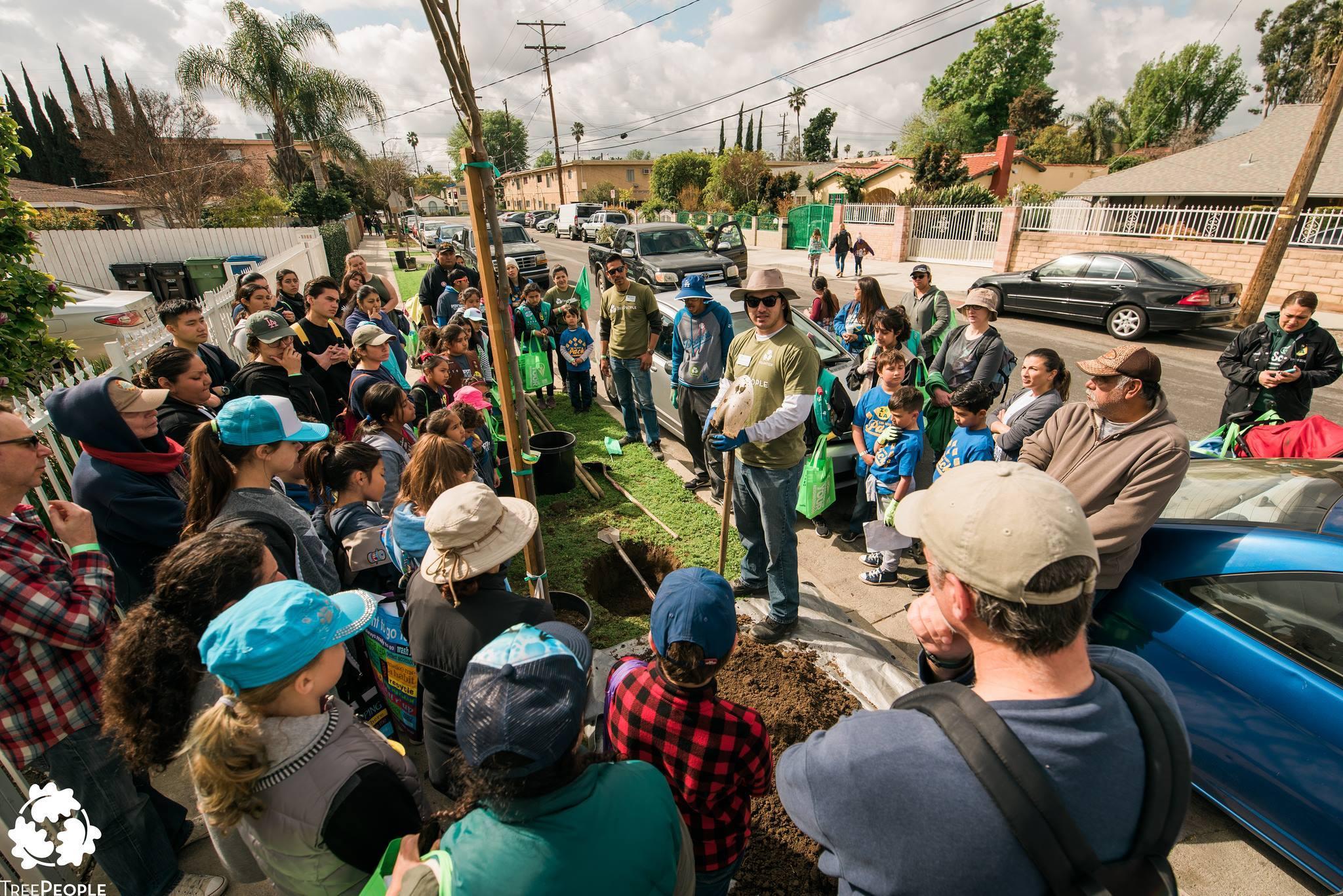 TreePeople Volunteers