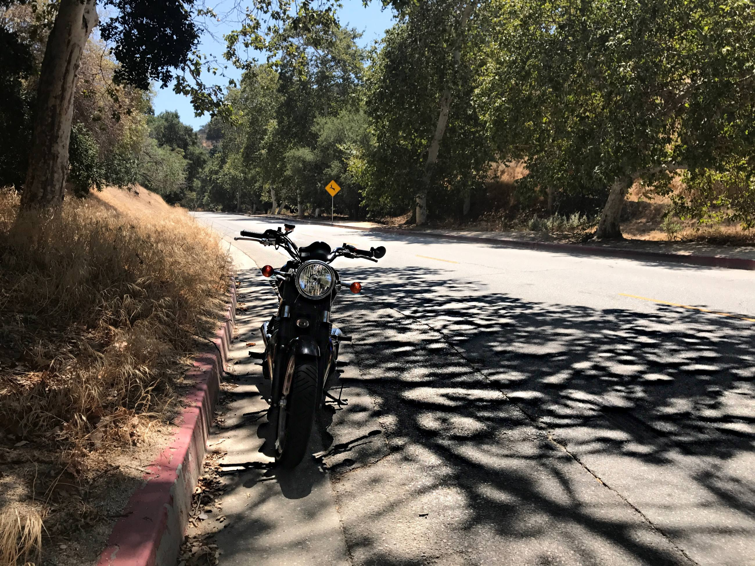 Griffith Park Motorcycle Ride Irena Murphy