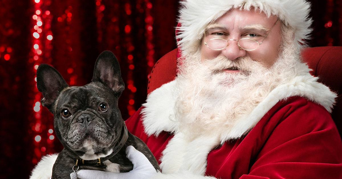 Paw-fect Pics with Santa at Glendale Galleria