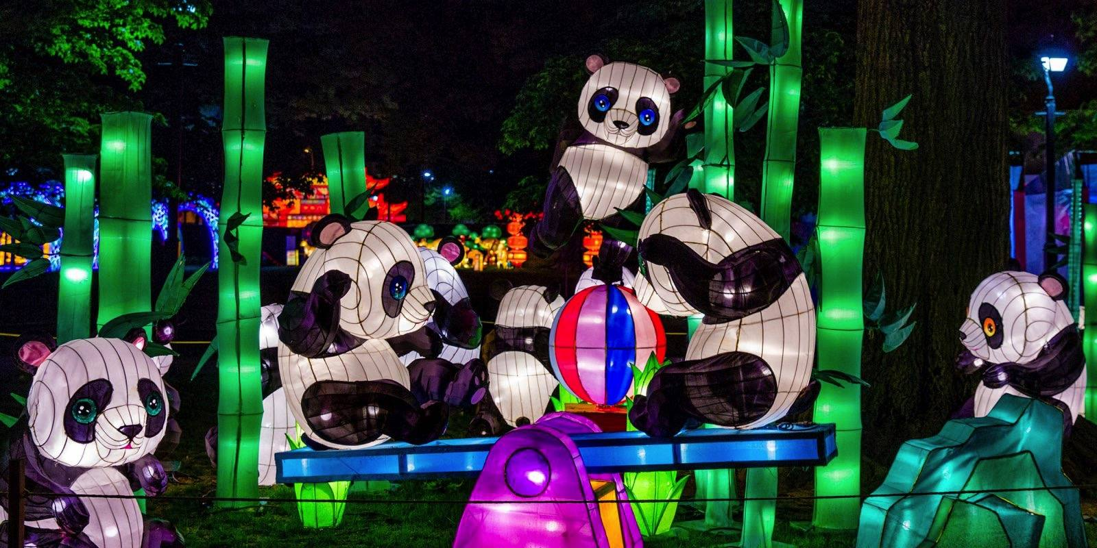 Moonlight Forest Pandas at the Los Angeles County Arboretum and Botanic Garden