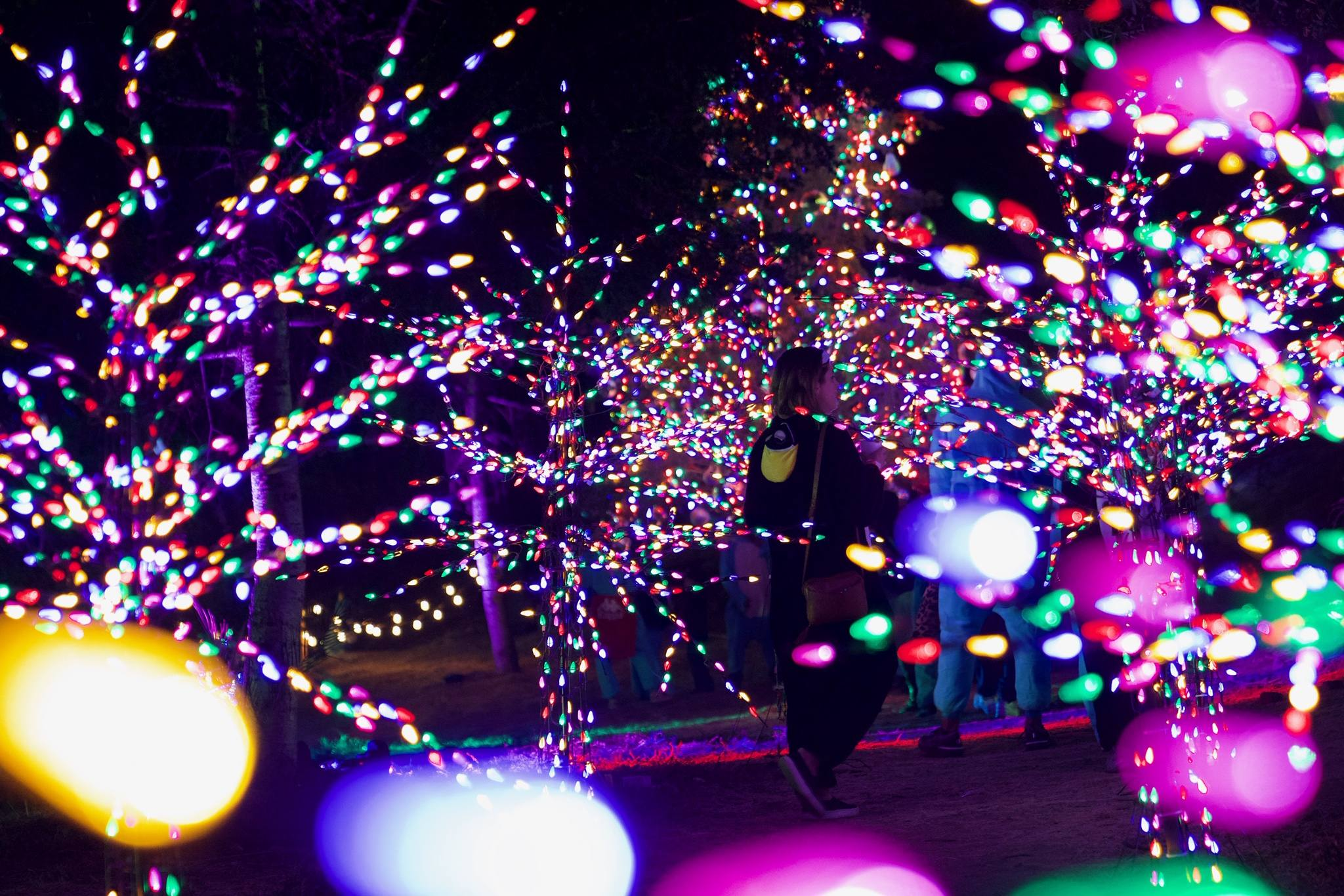 Holiday Light Path at Snow Day LA