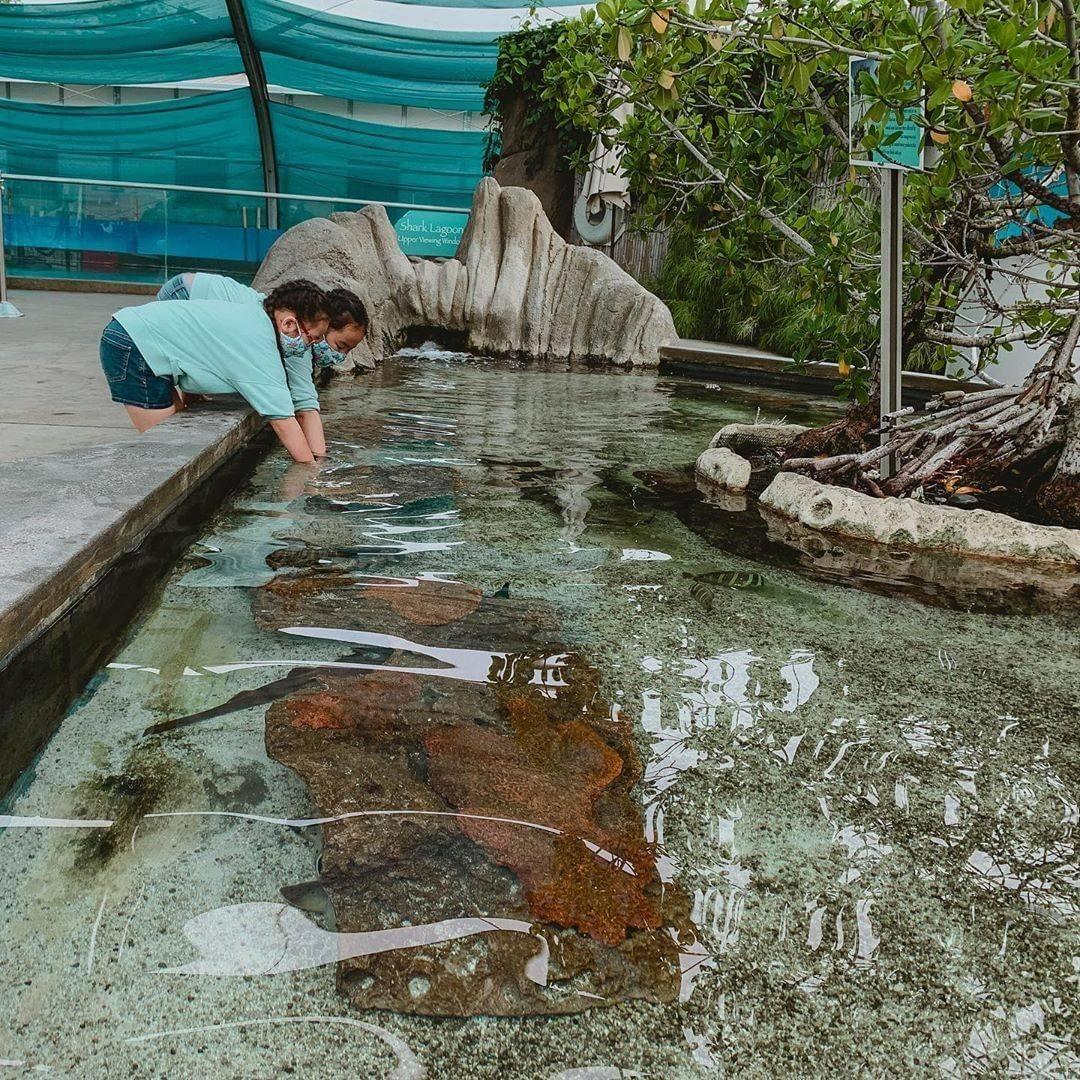 Aquarium of the Pacific Outdoor exhibit