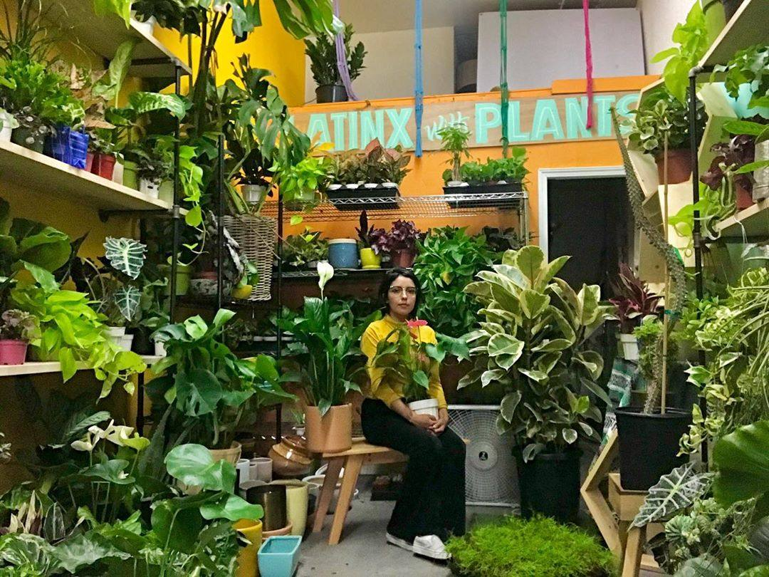 Latinx with Plants 2020