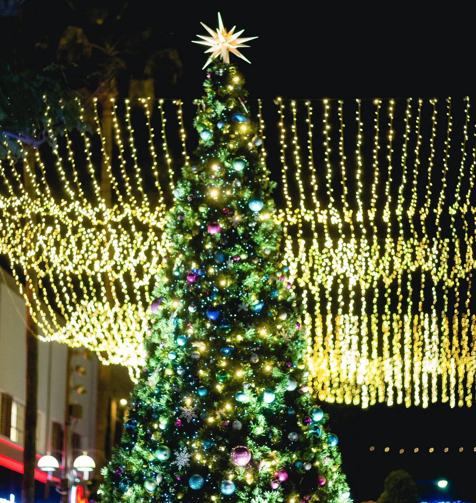 City of Santa Monica_Holiday 2020