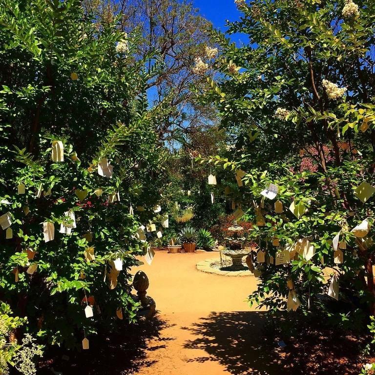 Arlington Garden Wish Trees