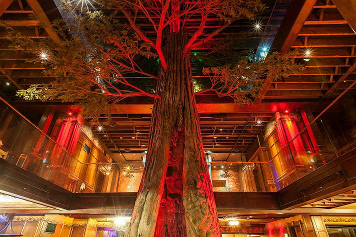 Redwood tree at Clifton's | Photo by Wonho Frank Lee, courtesy of Los Angeles Conservancy