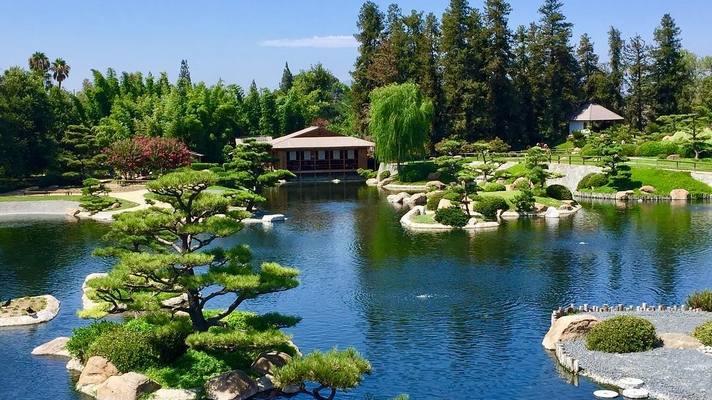 Jardin Japonais : Suiho En