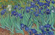 "Vincent van Gogh, ""Irises"" (1889) 